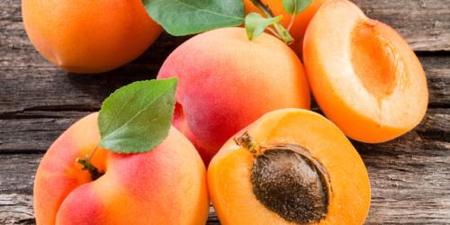 abricot-latelier-des-delices-1500-x-430