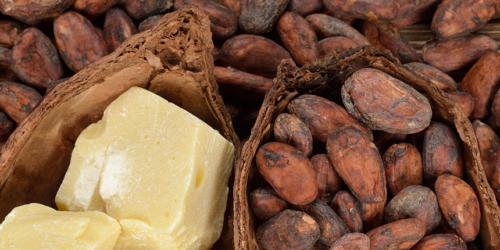 beurre-de-cacao-latelier-des-delices-1500-x-430