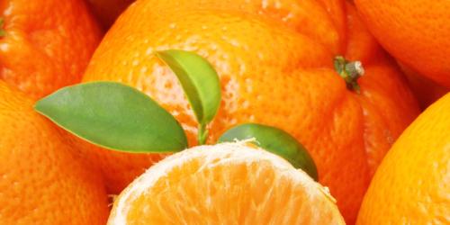 mandarine-latelier-des-delices-1500-x-430