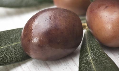 olive-latelier-des-delices-1500-x-430